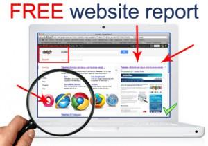 Free website report